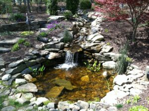 Waterfall and pond management services